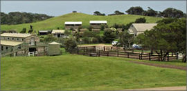 Ace Hi Riding Ranch - Accommodation Broome