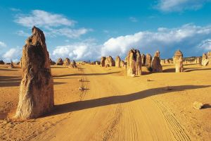 Pinnacles Desert Koalas and Sandboarding 4WD Day Tour from Perth - Accommodation Broome