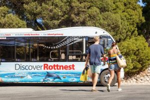 Rottnest Island Tour from Perth or Fremantle including Bus Tour - Accommodation Broome